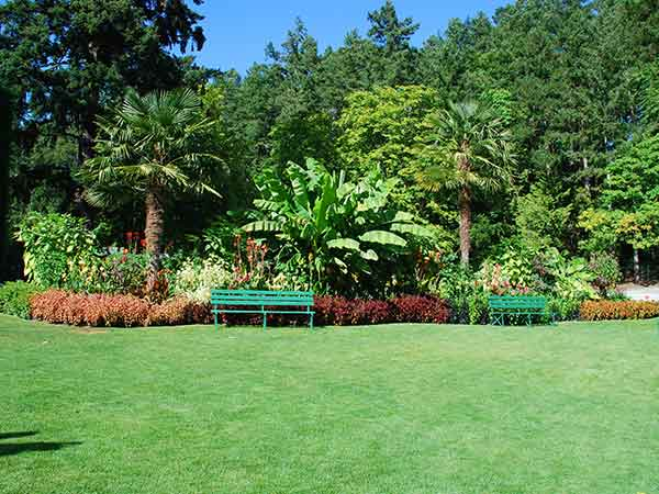 Impresa-di-giardinaggio-parma