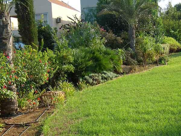 Impresa-di-giardinaggio