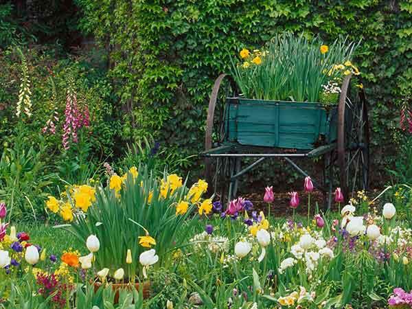 Preventivi-cura-giardini-parma